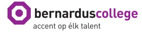 Bernarduscollege_eerste_graad_logo